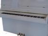 ebel-beli-sijaj-110